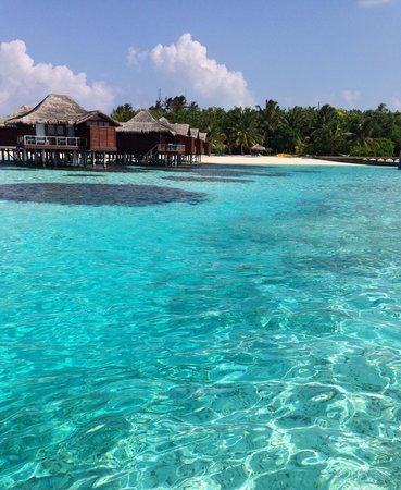Anantara Veli Maldives Resort : The water is unreal.
