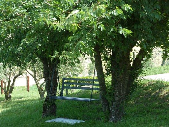 Particolare giardino foto de il giardino degli ulivi - Il giardino degli esperidi ...