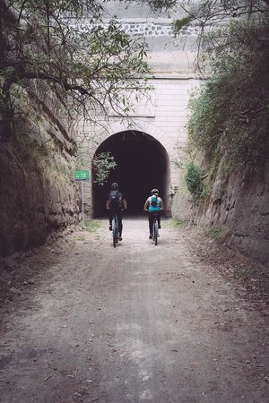 Biking Dutchman: Old railroad tracks