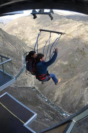 AJ Hackett Bungy New Zealand : Caught us off guard. We were falling forever!
