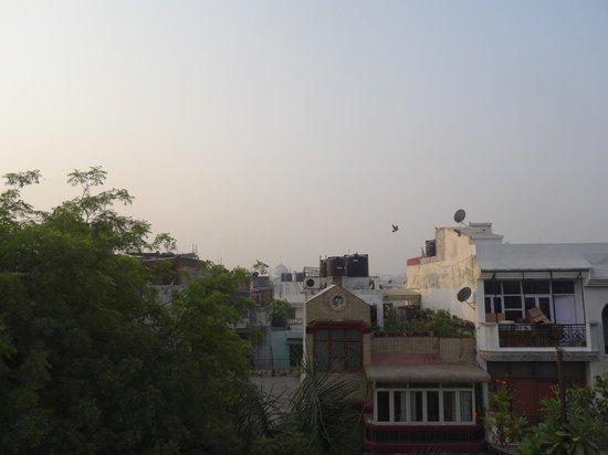 Tatvamasi Homestay : Aussicht von der Dachterrasse