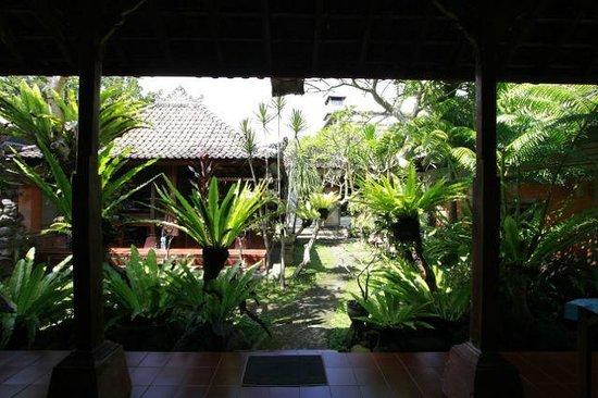 Citrus Tree Villas - Shana: Balcony