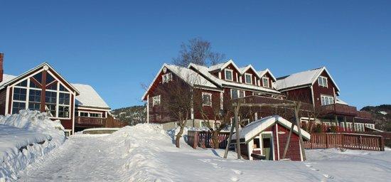 Bjornefjorden Gjestetun: Winter at Bjørnefjorden Gjestetun