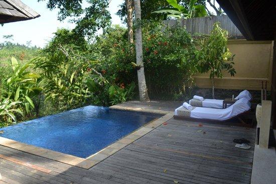 Komaneka at Tanggayuda: Pool at the villa