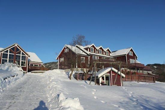 Bjornefjorden Gjestetun: It is pretty here also in winter