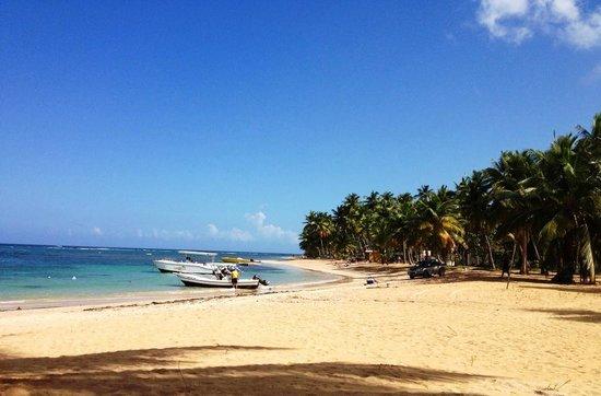 Strand westlich von Hotel Alisei