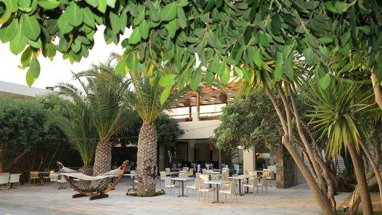 Elounda Palm Hotel : Terrase du Restaurant