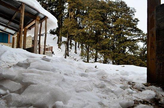 Agyaat Vaas- The Himalayan Retreat : Agyaat Vaas, Narkanda