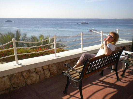 Reef Oasis Beach Resort : Смотровая площадка около ресторана Цитадель.
