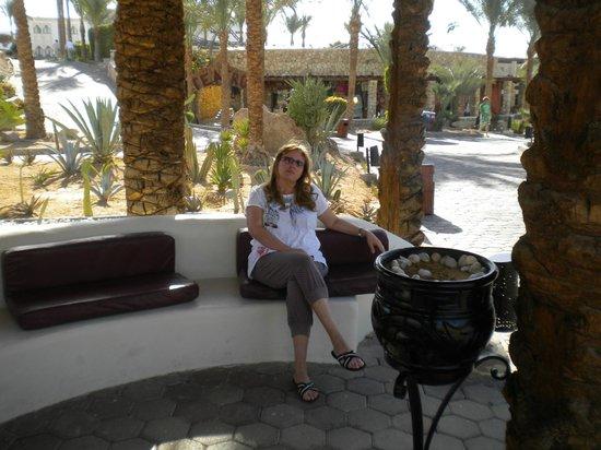 Reef Oasis Beach Resort : послеобеденный рилакс в кактусовом саду.