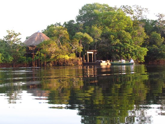 Juma Amazon Lodge: sun set over the lodges