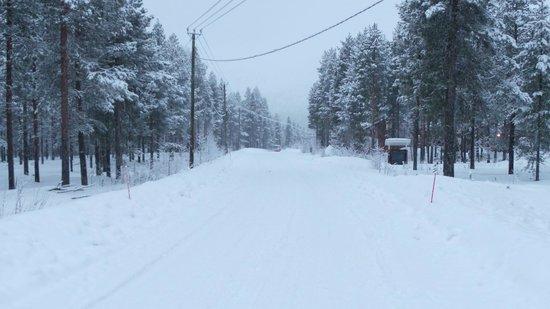 Levi Log Cabins: The road near cabin