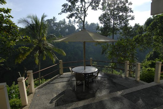Beji Ubud Resort: right in front of our room - room had this panorama view