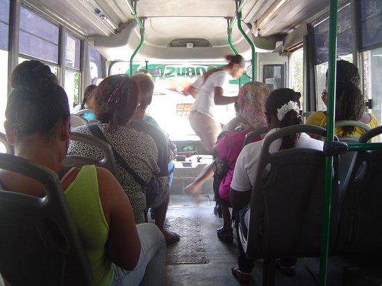 Cocoplum Beach Hotel: El bus