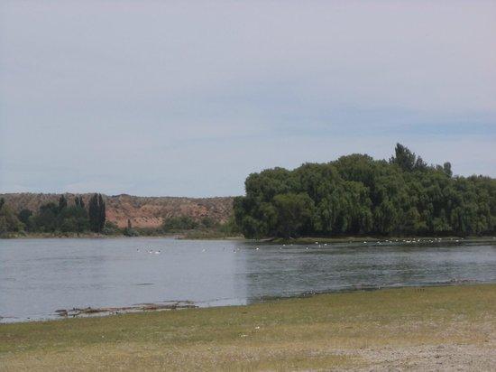 Cipolletti, Argentina: Costa del Rio Negro