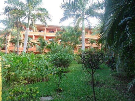 Barcelo Montelimar : hotel vu de la piscine