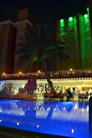 Sonas Alpina Hotel : бассейн