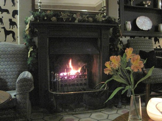 The Devonshire Arms Hotel & Spa: Cosy fire in the dog cocktail bar