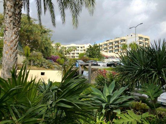 Raga Hotel: AREA