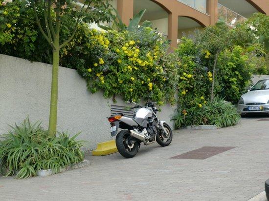 Raga Madeira Muthu Hotel: AREA