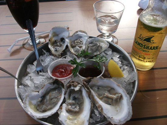 Blue Canoe Oyster Bar: Oysters on the Half Shell