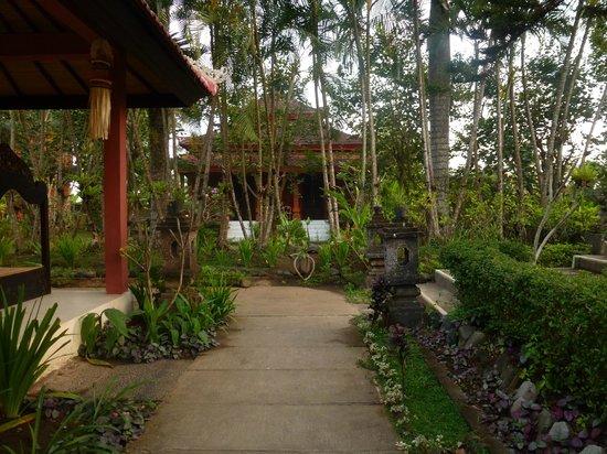 Suly Resort Yoga and Spa: around