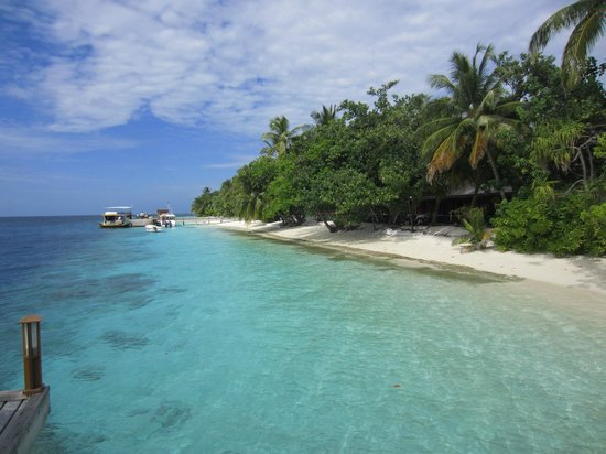 Vilamendhoo Island Resort & Spa: Beach
