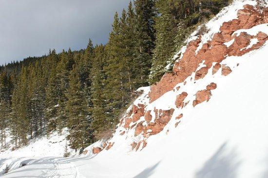 Boreas Pass Road: The view along the way!