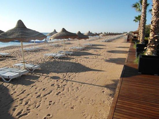 Baron Resort Sharm El Sheikh : La bellissima spiaggia.