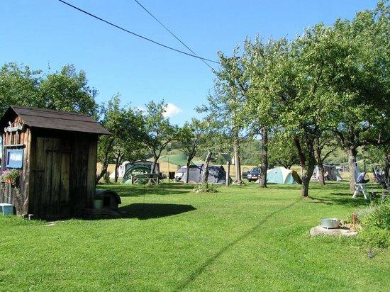 Campsite Sedliacky Dvor