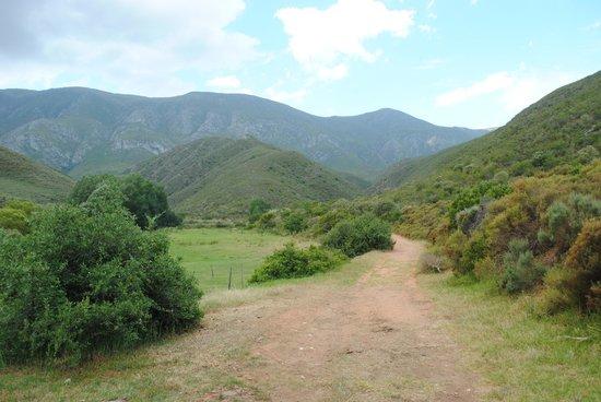 Pat Busch Mountain Reserve: Beautiful setting of Pat Busch Private Nature Reserve