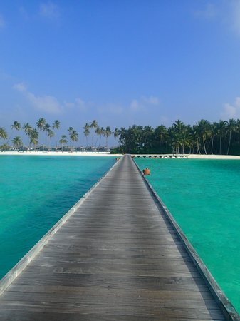 Gili Lankanfushi Maldives : Look at the colors!
