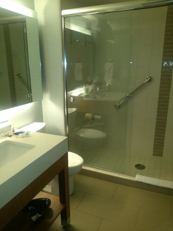 Hyatt Place Delray Beach : bathroom in king room