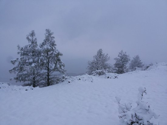 Chakrata, India: Chilmiri...snow all the wayyyyyyy