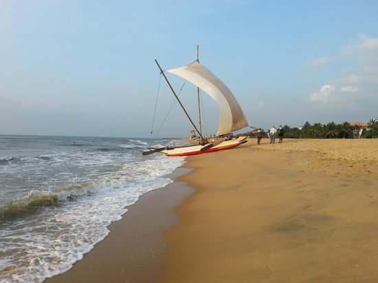 Gomez Place: Negombo beach just 5 minutes walk from the hotel