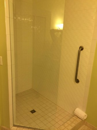 Hotel Indigo Jacksonville Deerwood Park: nice walk in shower