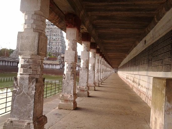 Chidambaram Nataraja Temple: HOLY SIVAGANGA TANK-muralitharan photo