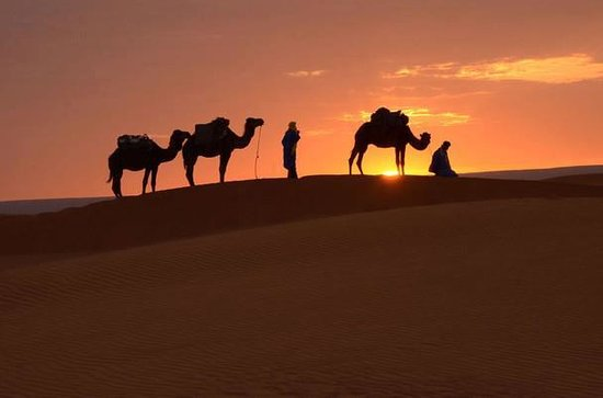 Morocco Culture Tours : camel trekking in merzouga