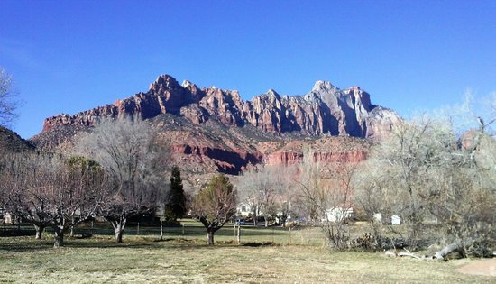 Canyon Vista Lodge - Bed & Breakfast: View of Zion from the backyard