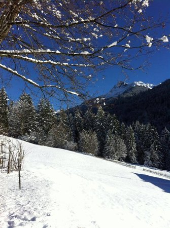 Hotel Landhaus Sonnblick: Sunny day with new snow in Wald am Arlberg