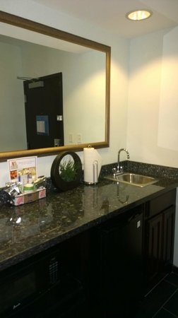 Hampton Inn & Suites Dallas / Lewisville - Vista Ridge Mall: Bathroom