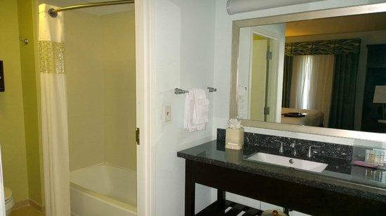 Hampton Inn & Suites Dallas / Lewisville - Vista Ridge Mall : Bathroom