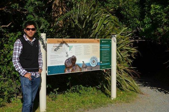 Ohau Waterfall Walk and Seal Pups: entrance