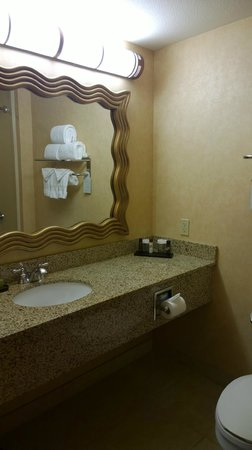 Embassy Suites by Hilton Dallas Frisco Hotel Convention Center & Spa : Bathroom