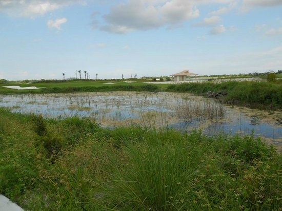 Osprey Point Golf Course: Wetlands throughout the course!
