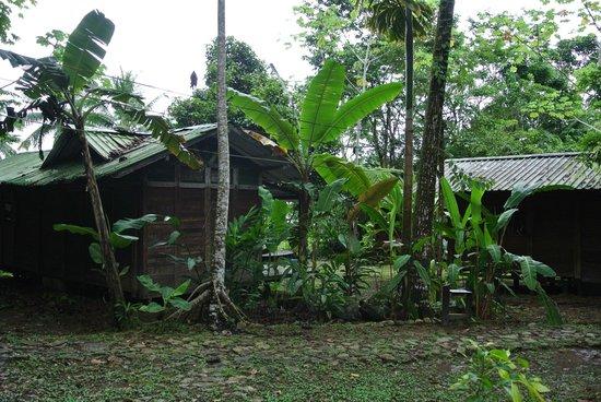 El Almejal Lodge & Natural Reserve: Hütten