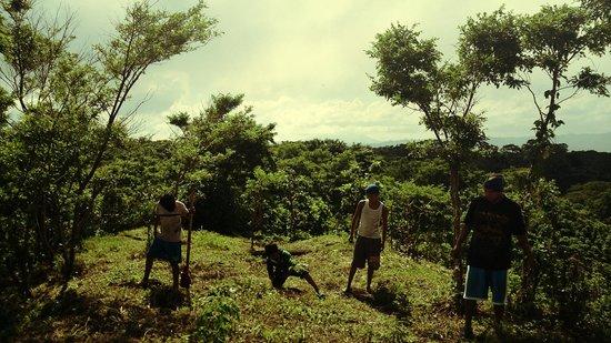 La Mariposa Spanish School and Eco Hotel: Planting trees