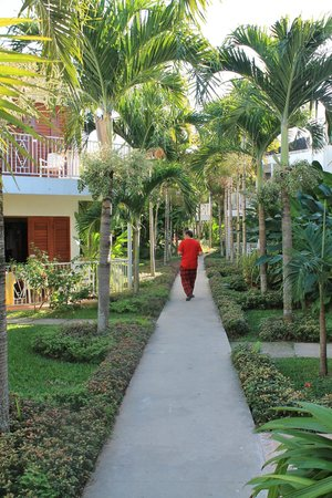 Negril Palms Hotel: walkway back to room