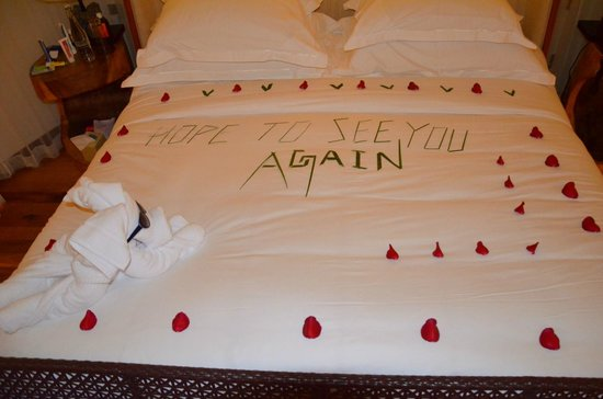 Jumeirah Vittaveli: Last night's towel fairy art...