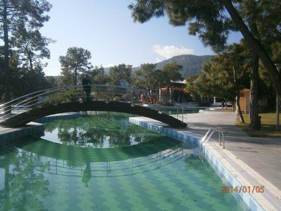 Rixos Sungate Hotel: havuz..